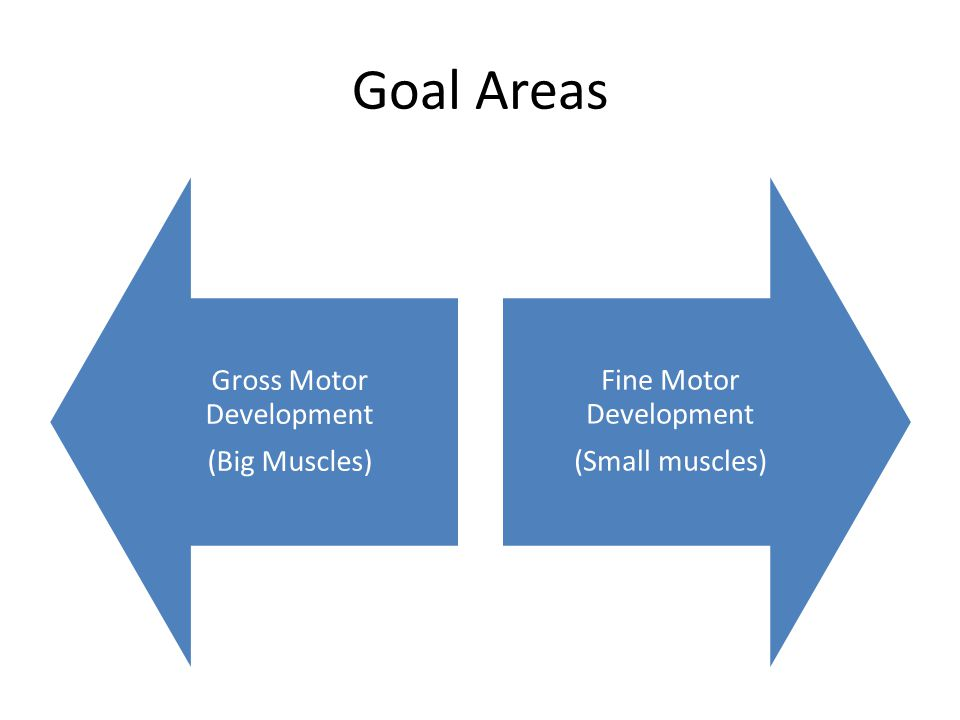 Goal Areas Gross Motor Development (Big Muscles)