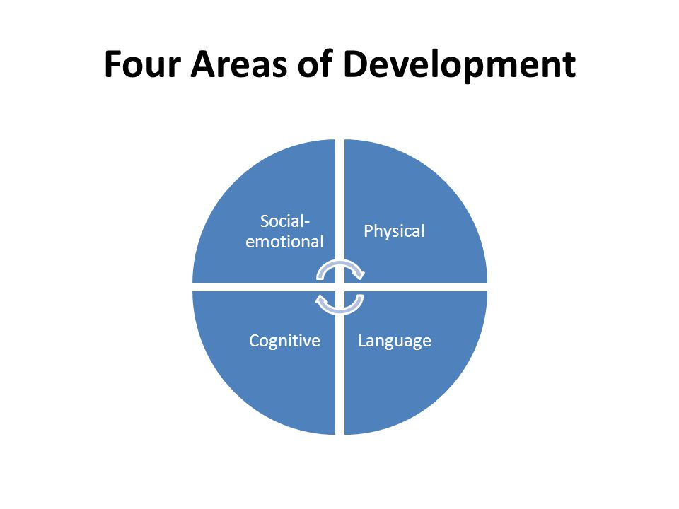 Four Areas of Development