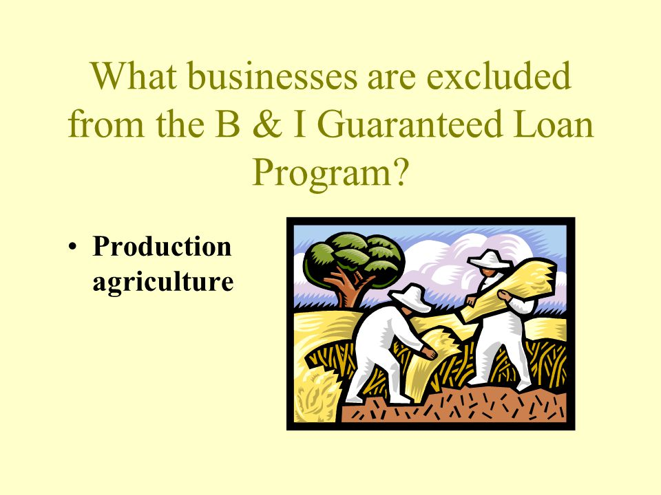 What businesses are excluded from the B & I Guaranteed Loan Program