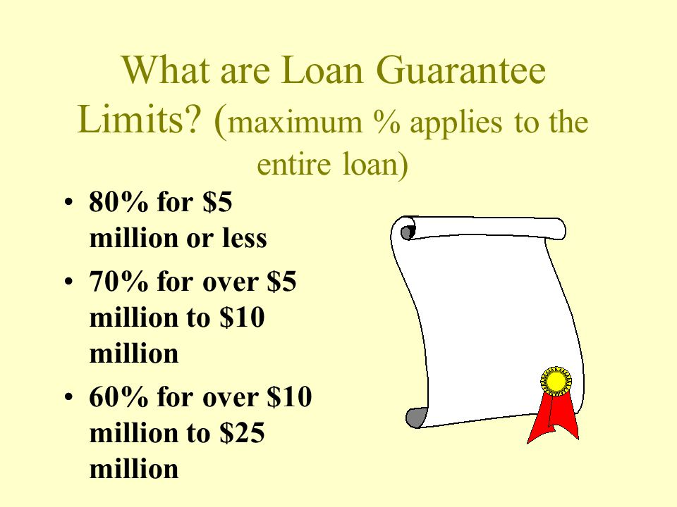 What are Loan Guarantee Limits (maximum % applies to the entire loan)