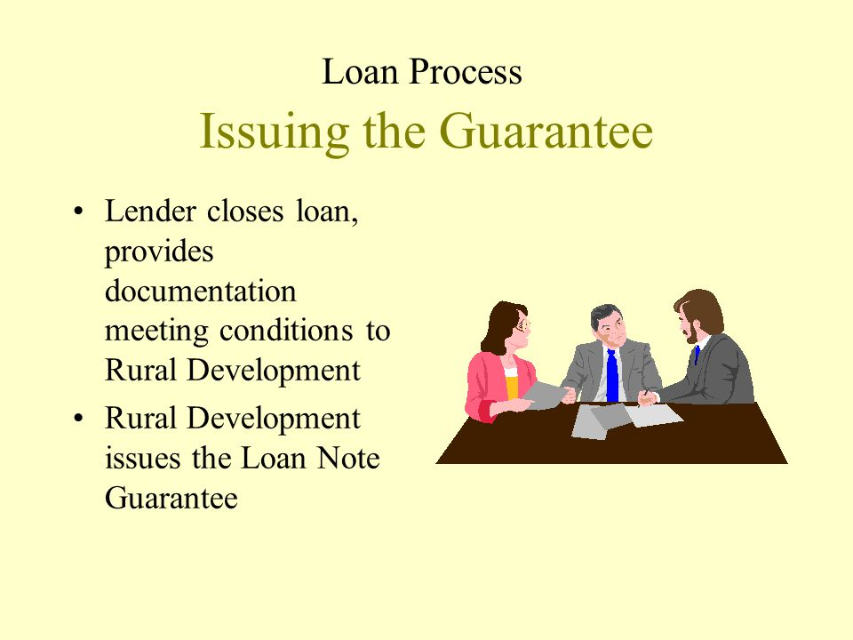 Issuing the Guarantee Loan Process