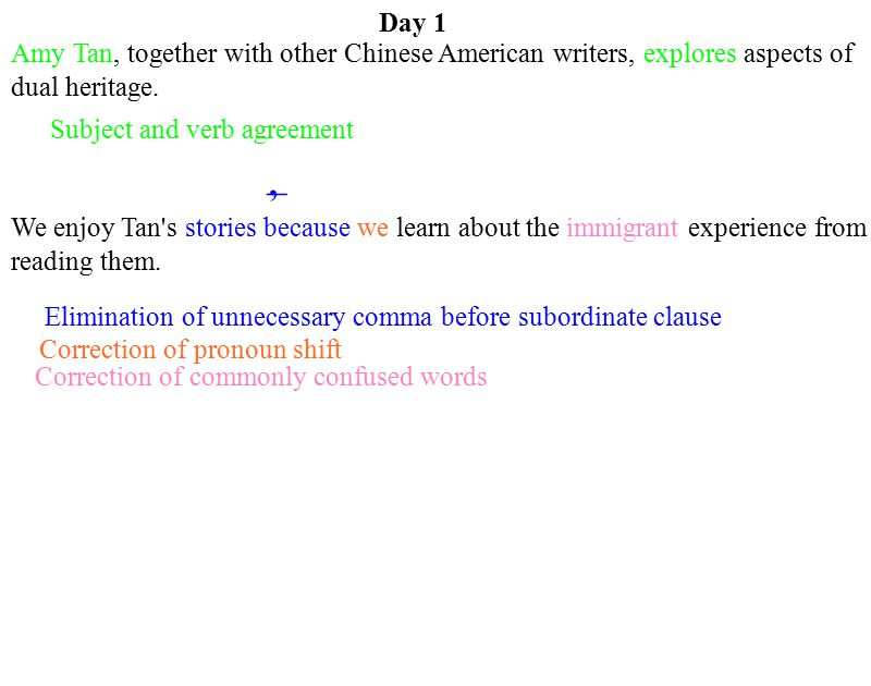 Day 1 Amy Tan, together with other Chinese American writers, explores aspects of dual heritage. Subject and verb agreement.