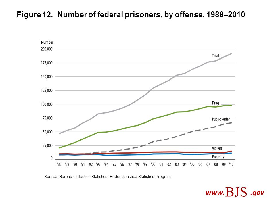 Figure 12. Number of federal prisoners, by offense, 1988–2010