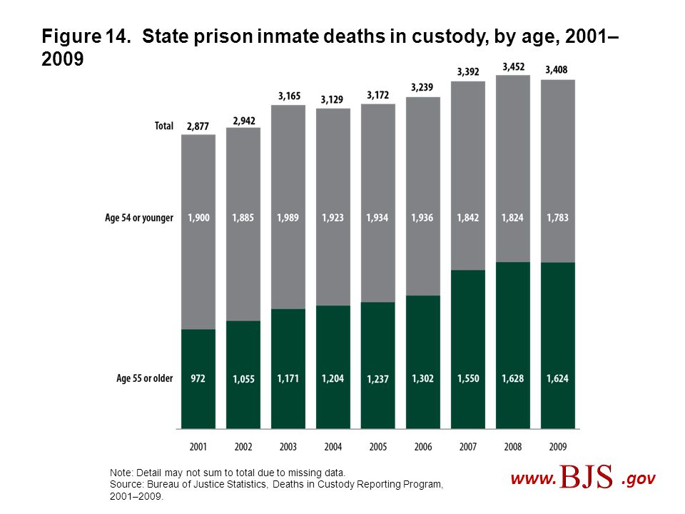 Figure 14. State prison inmate deaths in custody, by age, 2001–2009