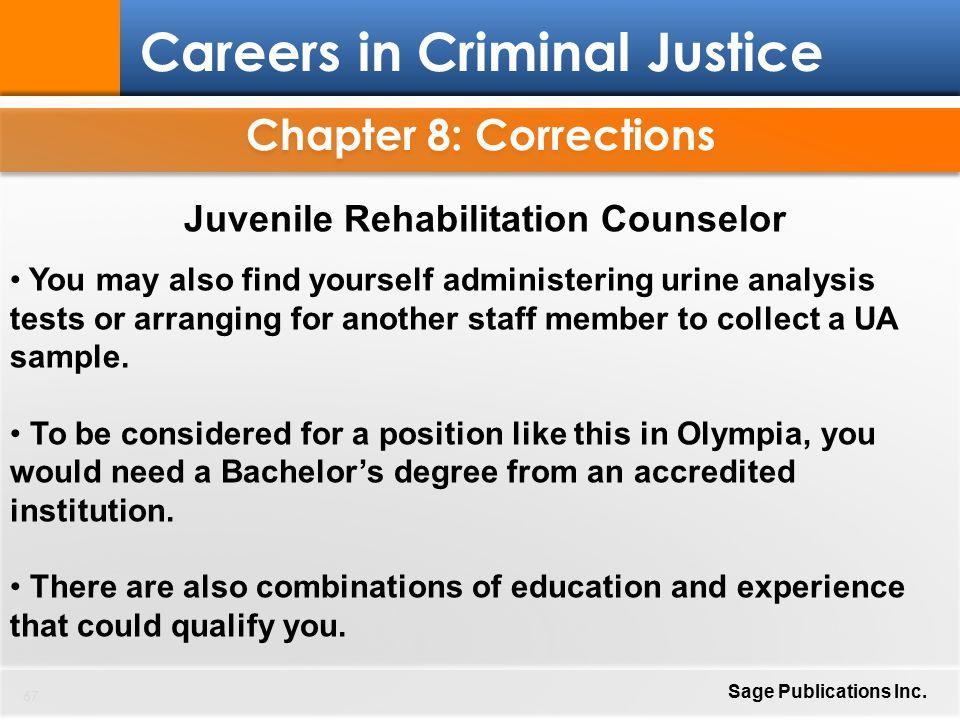 Careers In Criminal Justice Ppt Download