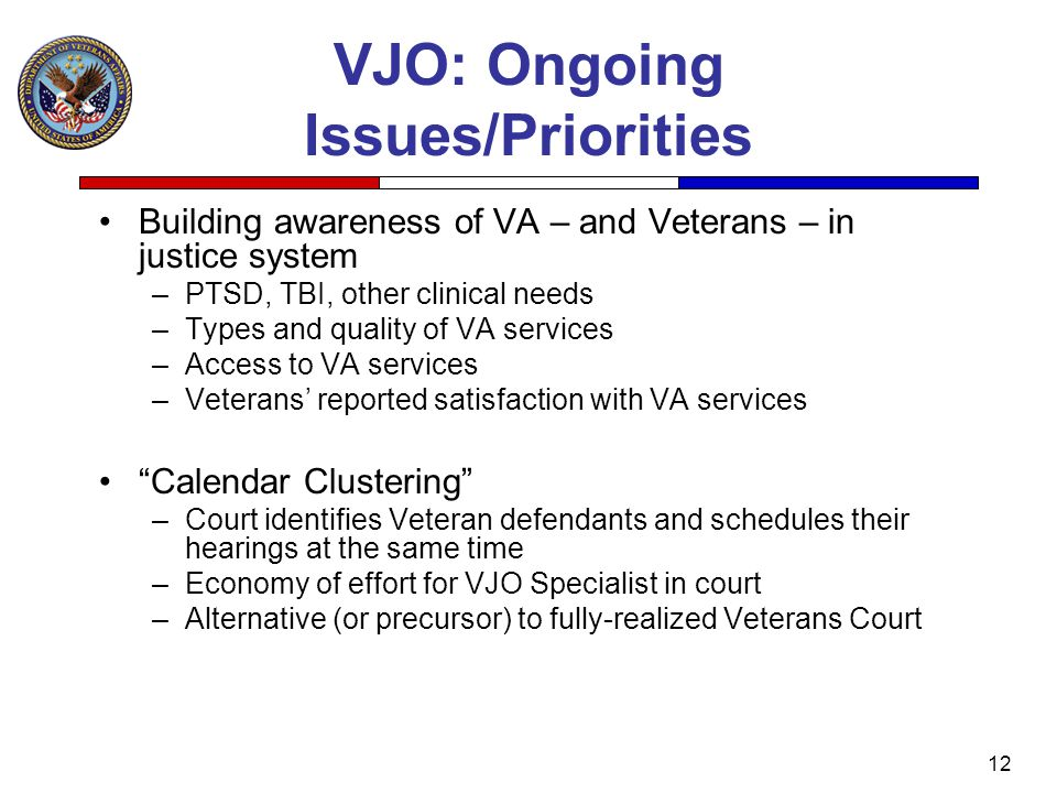 VJO: Ongoing Issues/Priorities
