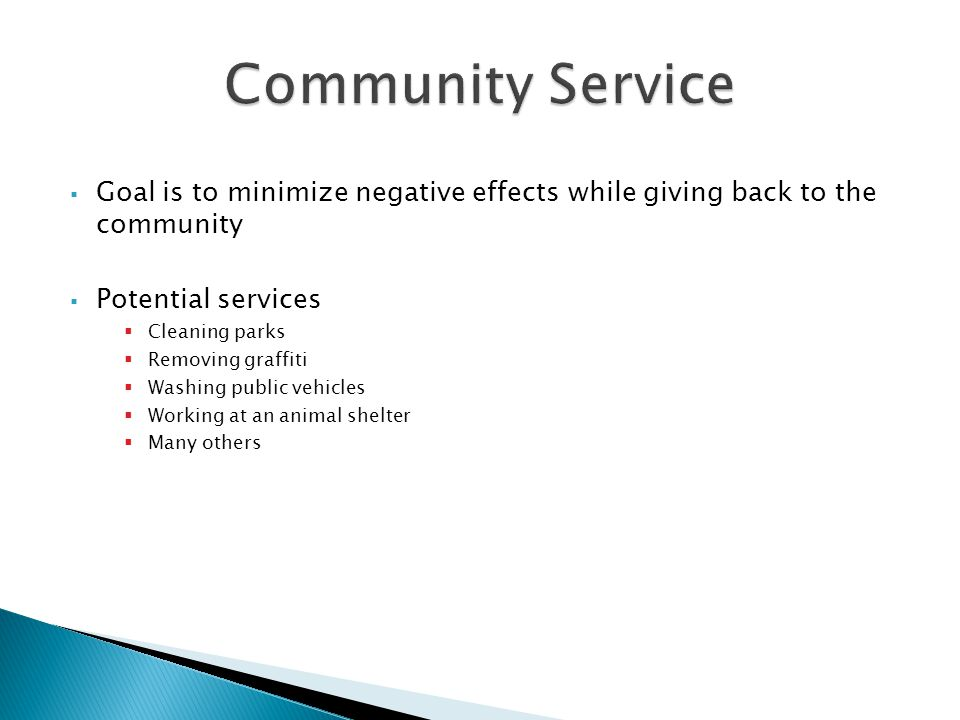 Community Service Goal is to minimize negative effects while giving back to the community. Potential services.