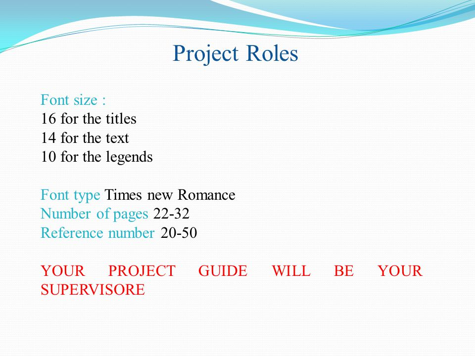 Project Roles Font size : 16 for the titles 14 for the text