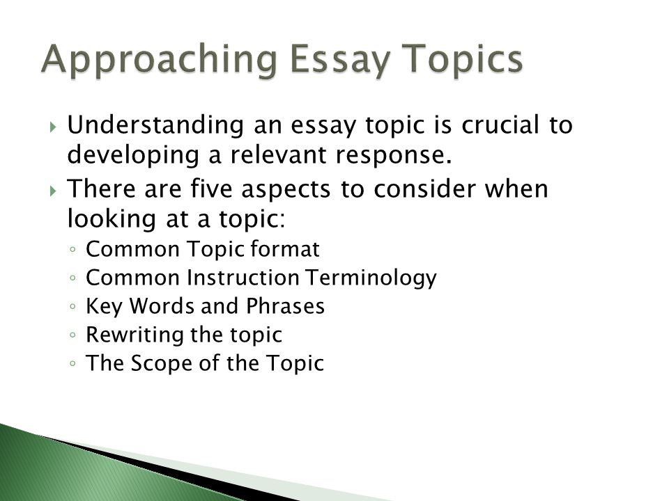High School Essay Samples Approaching Essay Topics How To Write A Thesis Sentence For An Essay also Essays On Health Care How To Write A Text Response Essay  Ppt Download Business Essay Writing Service