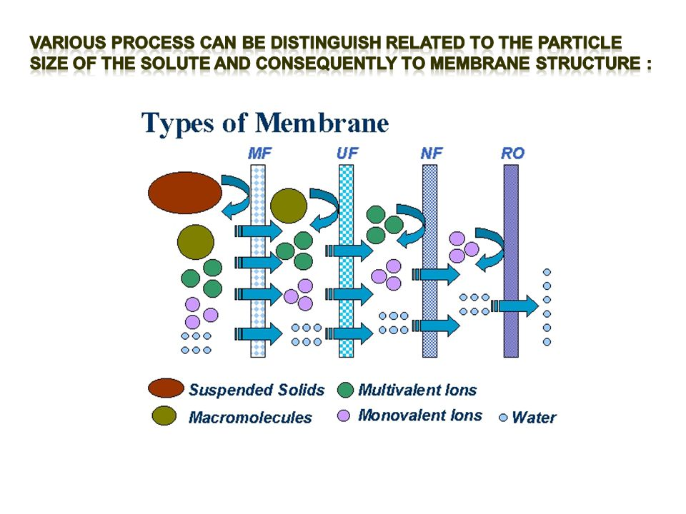 Various PROCESS CAN BE DISTINGUISH RELATED TO THE PARTICLE SIZE OF THE SOLUTE AND CONSEQUENTLY TO MEMBRANE STRUCTURE :