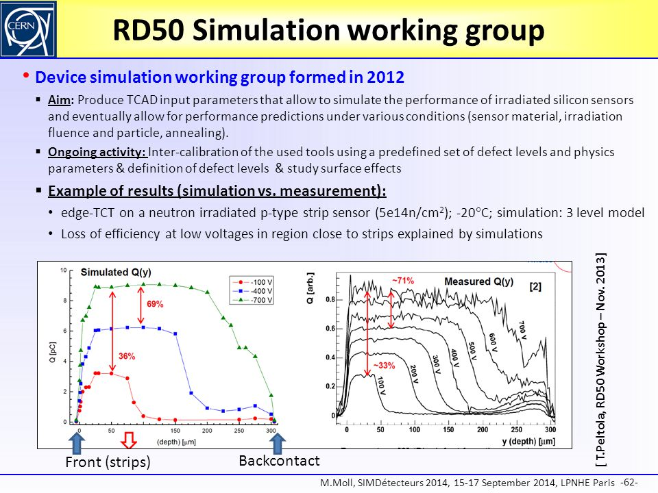 RD50 Simulation working group