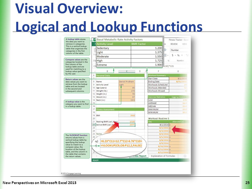 Visual Overview: Logical and Lookup Functions