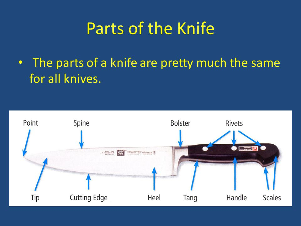 Parts of the Knife The parts of a knife are pretty much the same for all knives.