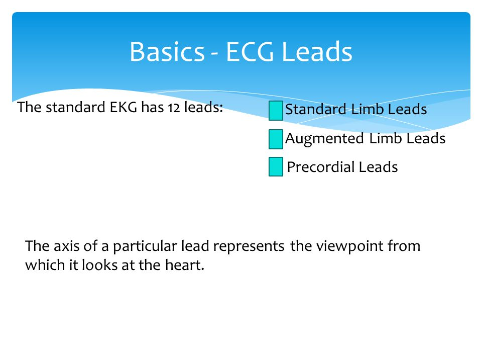 Basics - ECG Leads The standard EKG has 12 leads: