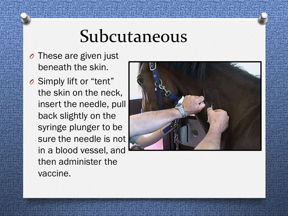 Subcutaneous These are given just beneath the skin.