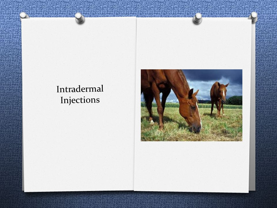 Intradermal Injections