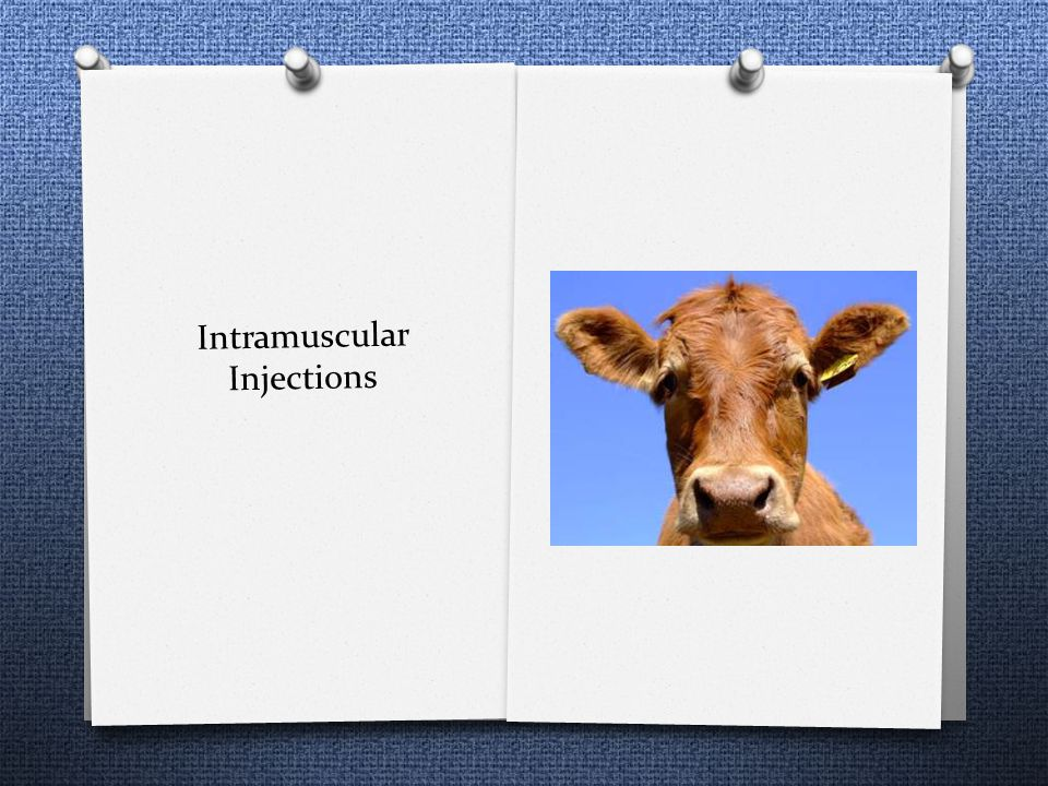Intramuscular Injections