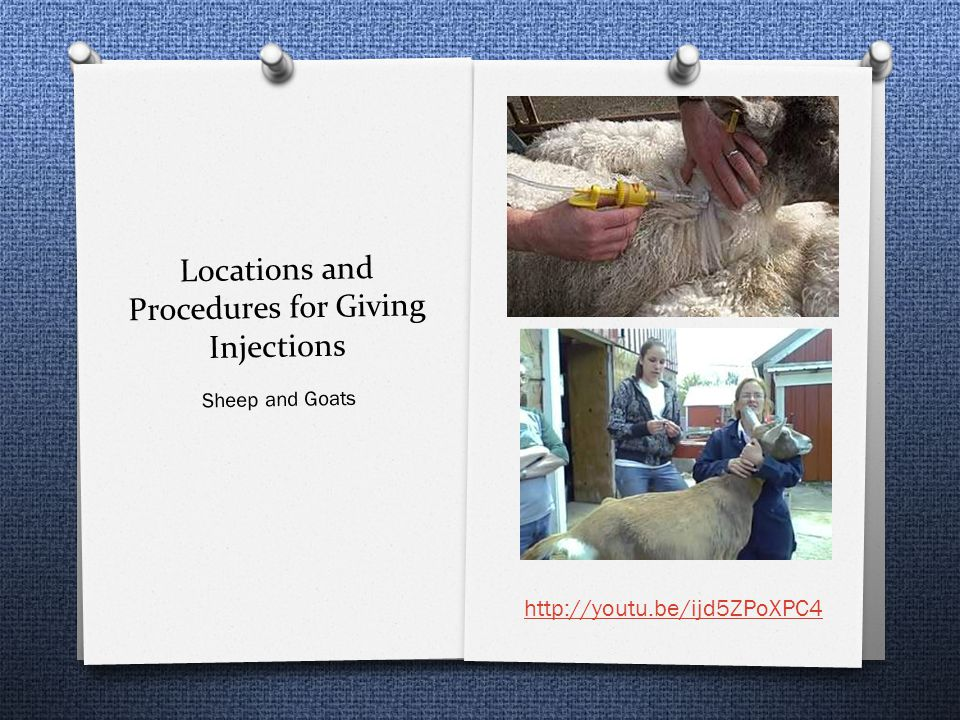Locations and Procedures for Giving Injections