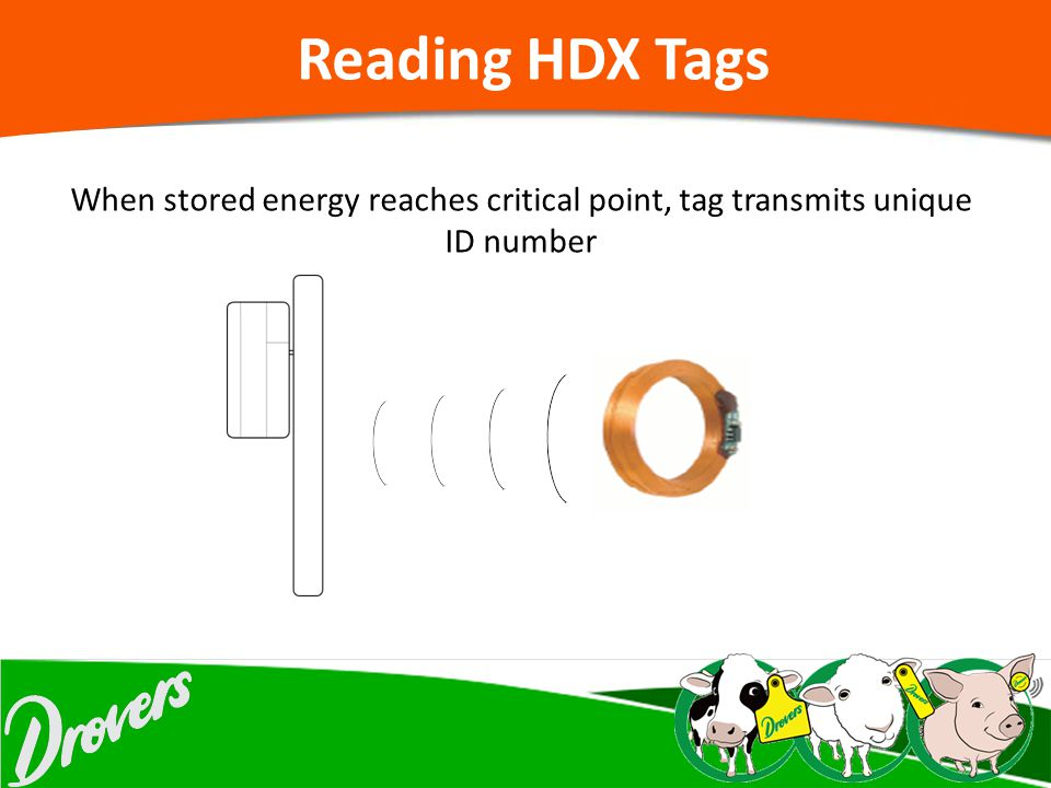 Reading HDX Tags When stored energy reaches critical point, tag transmits unique ID number