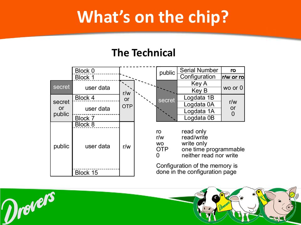 What's on the chip The Technical