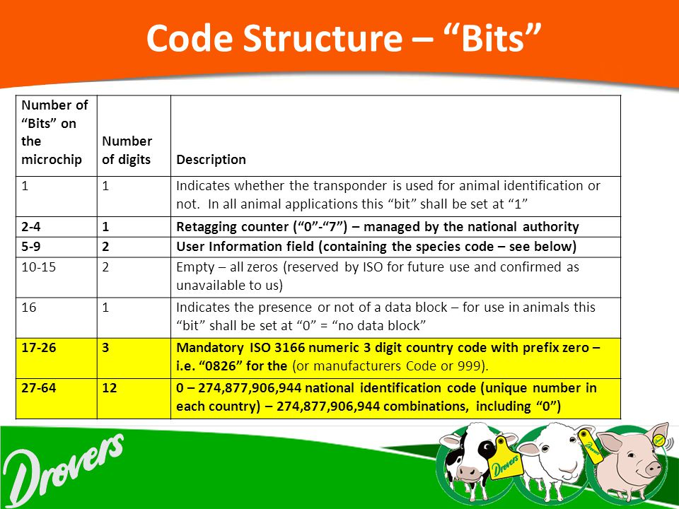 Code Structure – Bits