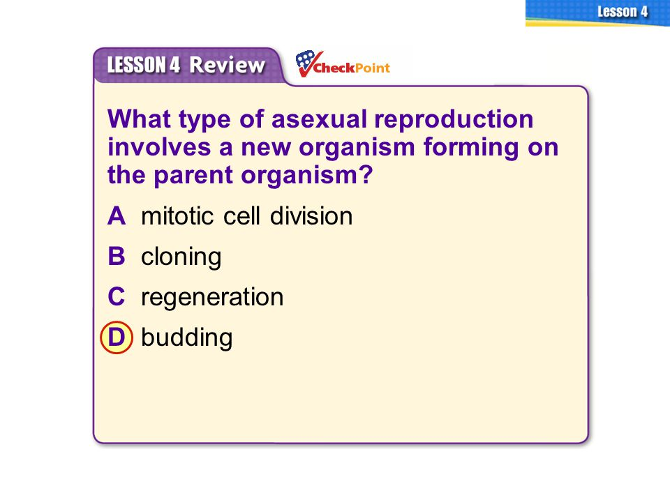 2 types of eukaryotic asexual reproduction regeneration
