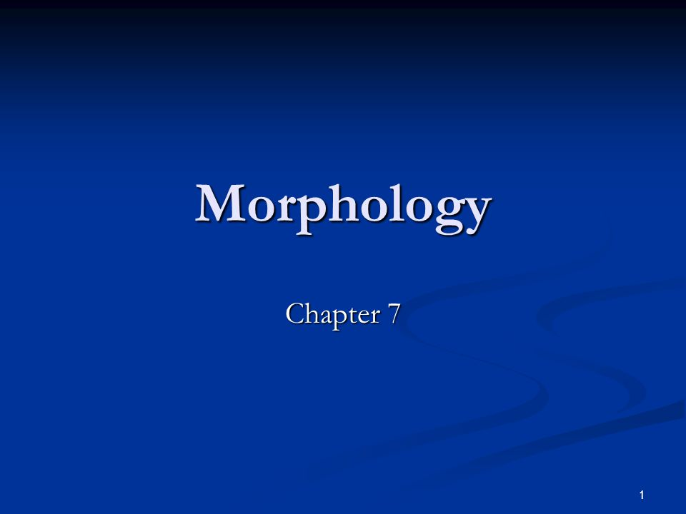Morphology Chapter 7 Prepared by Alaa Al Mohammadi