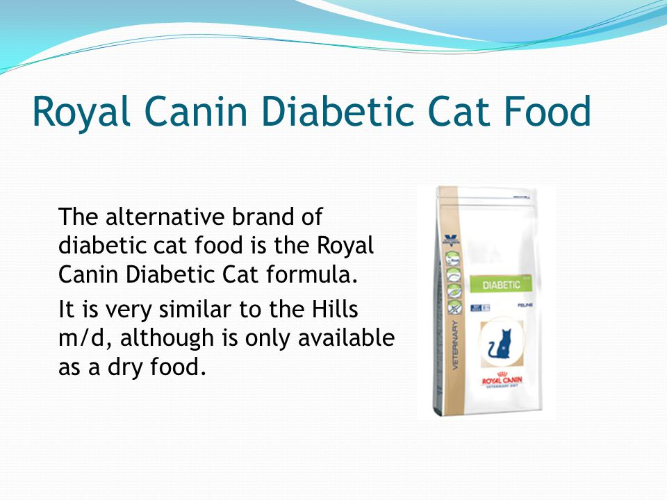 Royal Canin Diabetic Food For Cats