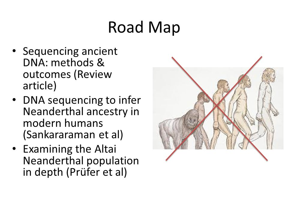Sequencing Neanderthal DNA - ppt video online download on dna code, dna gel electrophoresis, dna samples, dna testing, dna fingerprinting, dna comparison, dna extraction, dna fragmentation, dna replication, dna profiling, dna sequence chart, dna mapping, dna structure, dna nucleotide sequence, dna gene, dna double helix, dna background, dna amplification, dna molecule, dna chromatogram,