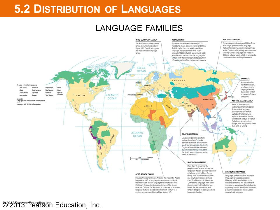 5.2 Distribution of Languages