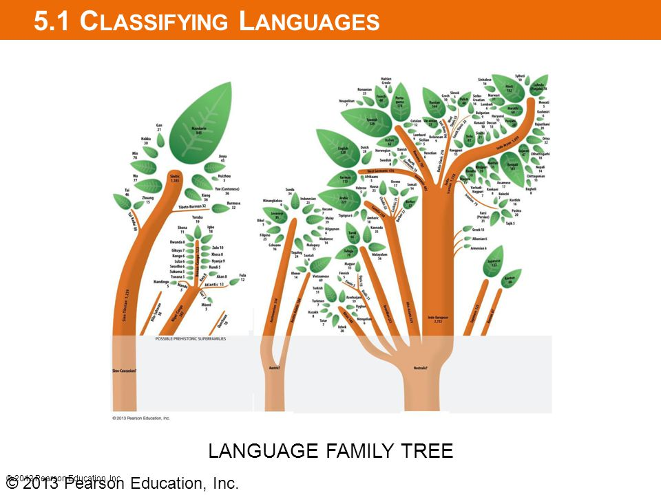 5.1 Classifying Languages
