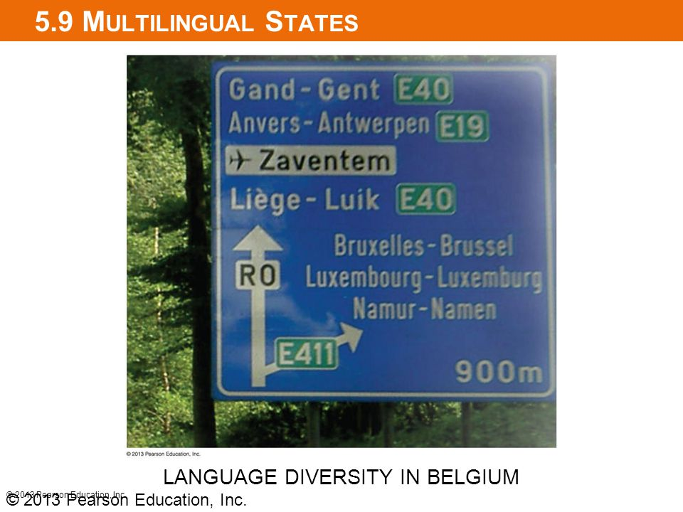 LANGUAGE DIVERSITY IN BELGIUM
