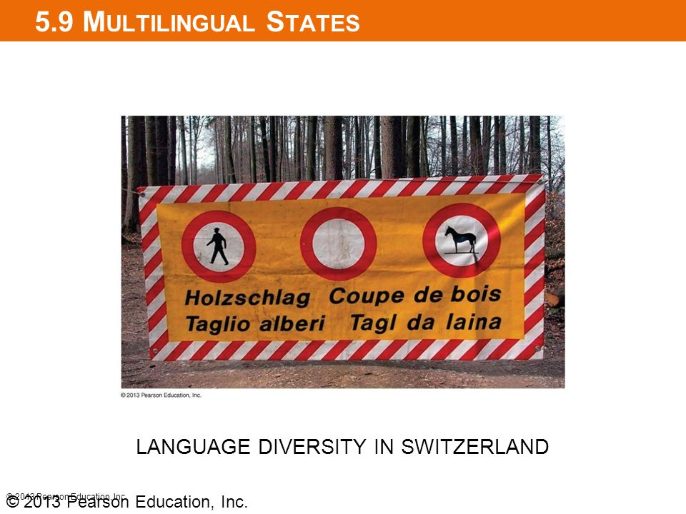 LANGUAGE DIVERSITY IN SWITZERLAND