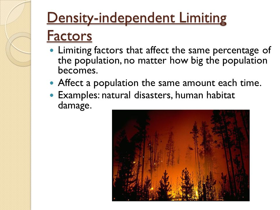 Examples Of Density Independent Factors Gallery Example Cover