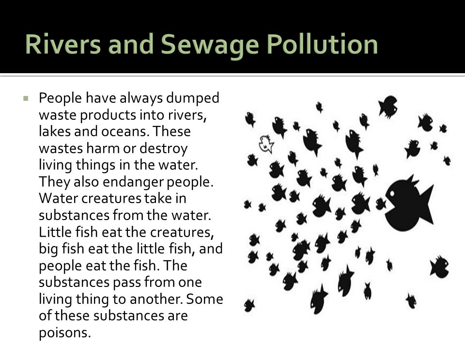 Rivers and Sewage Pollution