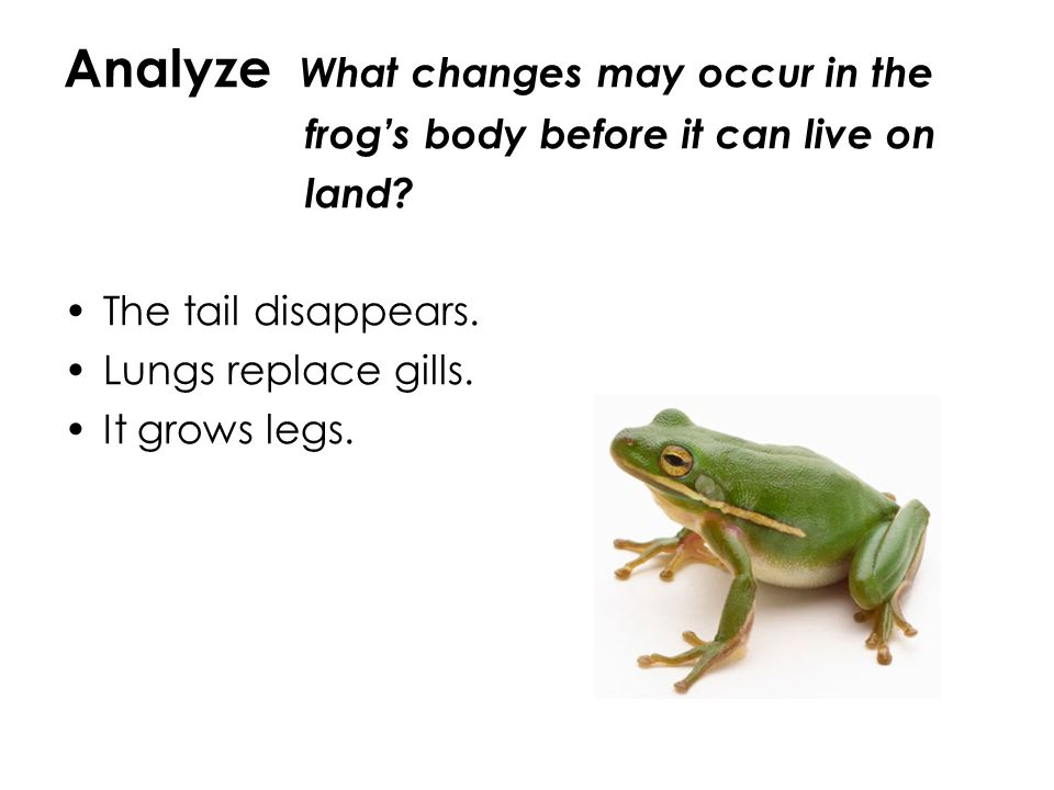 Analyze What changes may occur in the