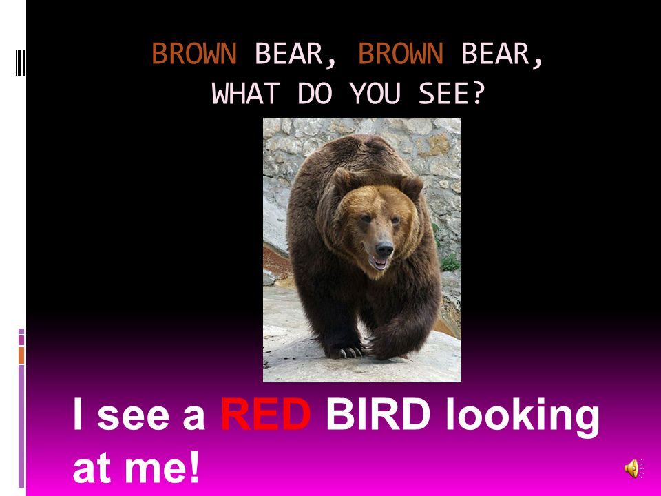 BROWN BEAR, BROWN BEAR, WHAT DO YOU SEE