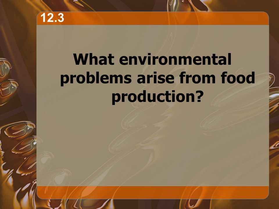 What environmental problems arise from food production