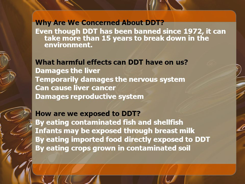 Why Are We Concerned About DDT