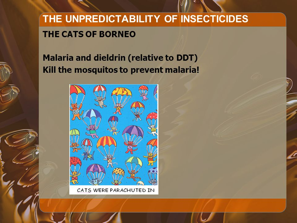 THE UNPREDICTABILITY OF INSECTICIDES