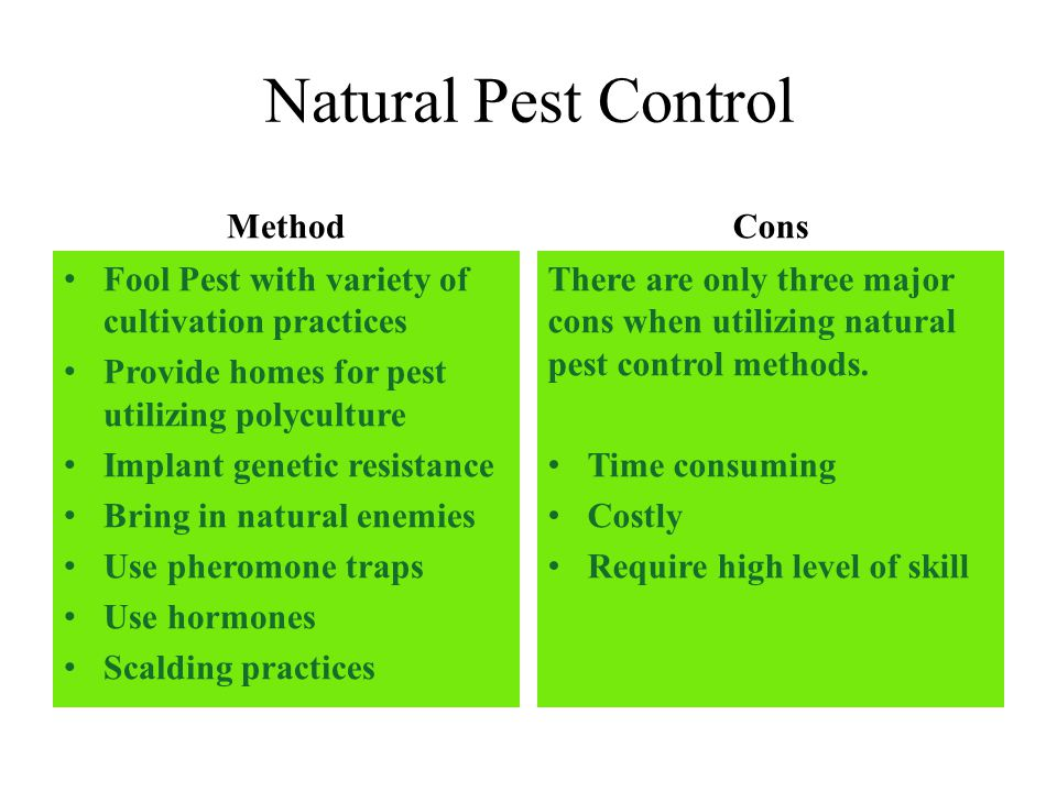 advantages of pheromone application in controlling pests Ipm takes advantage of all pest management options including inspection and monitoring for apple pests, the sanitation and maintenance of the orchard and trees, cultural practices like traps, and the judicious use of less risky pesticides, such as pheromone traps, first.
