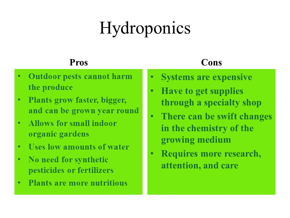 Hydroponics Pros Cons Systems Are Expensive