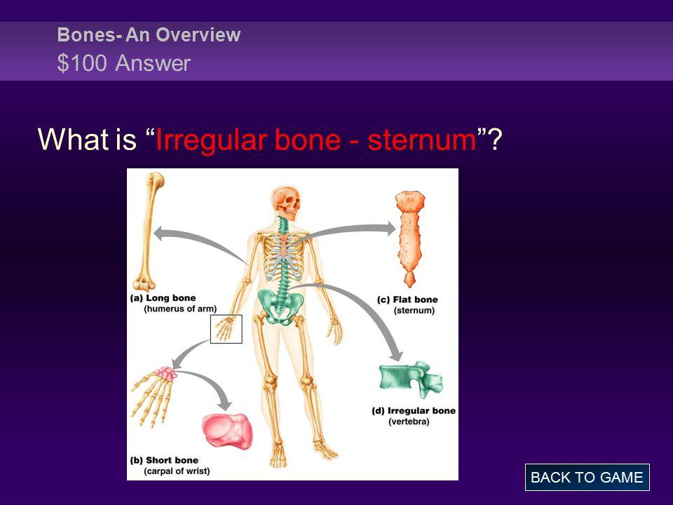 Skeletal System Jeopardy - ppt video online download