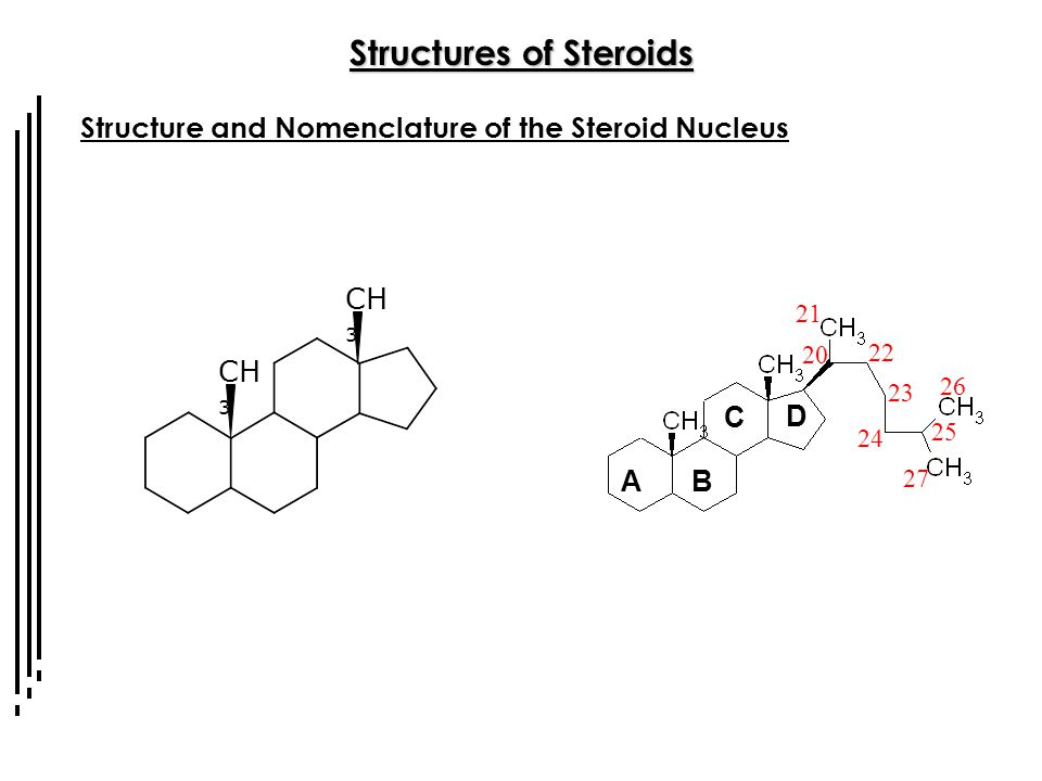 Steroids Overall Organization of the Lecture Series - ppt
