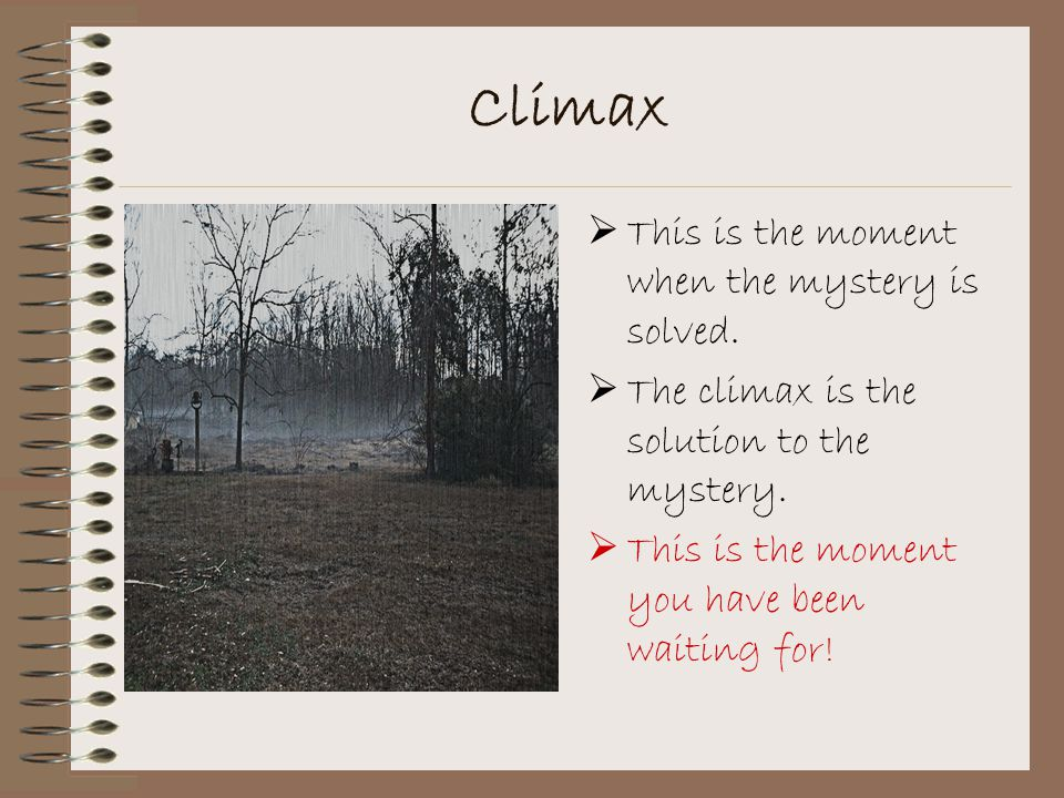 Climax This is the moment when the mystery is solved.