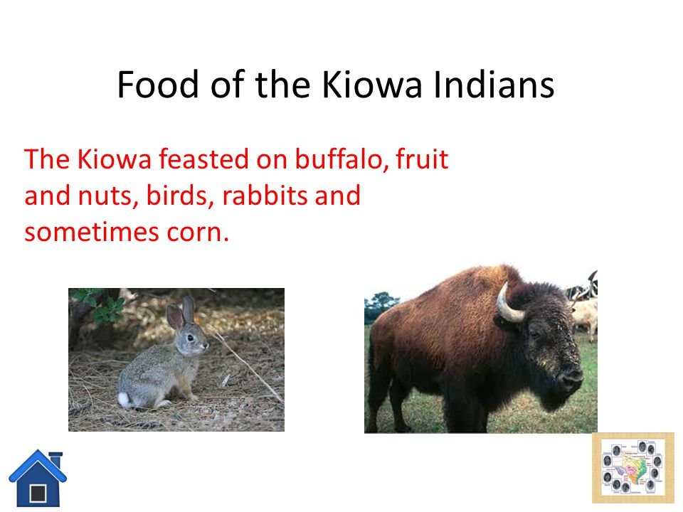 Kiowa Indians add picture here Click here to learn about ... Kiowa Food