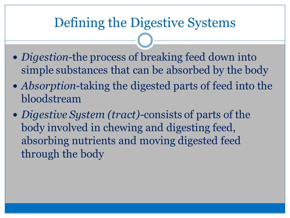 a p interactive physiology worksheet digestive system and absorption Lab #12: digestive physiology p2 will often bask after feeding to elevate body temperature and facilitate enzymatic digestion enzyme activity is also influenced by the ph.
