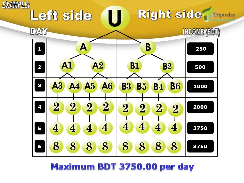 EXAMPLE: Left side Right side DAY INCOME (BDT)