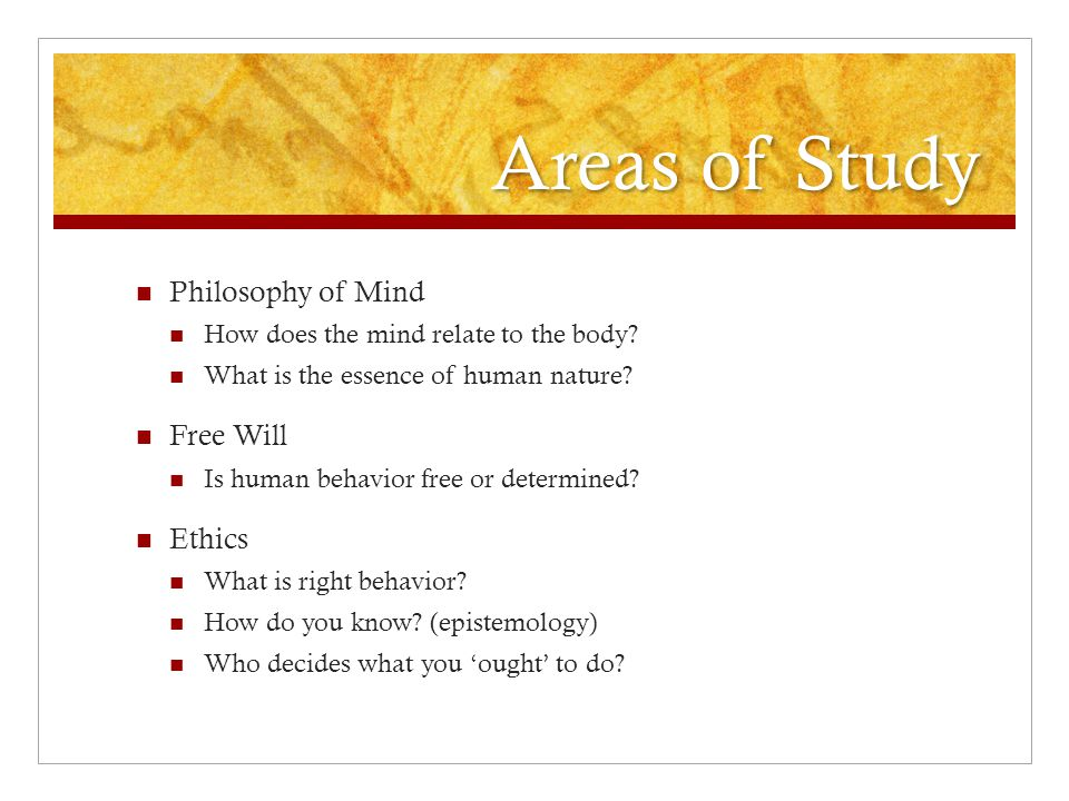 Areas of Study Philosophy of Mind Free Will Ethics
