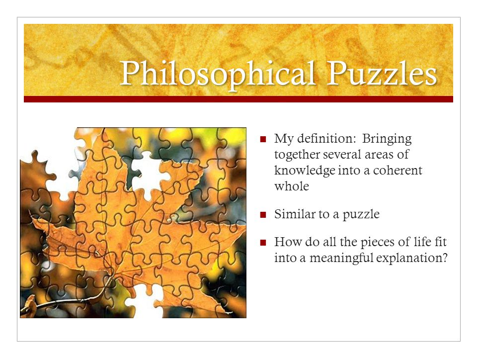 Philosophical Puzzles